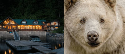 What's New and Where to be Seen in British Columbia for 2019