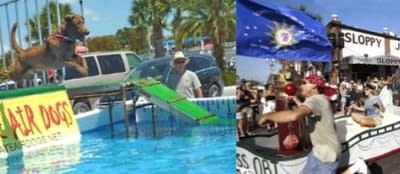 What's on? Spring events in the Florida Keys